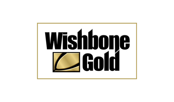 Turner Pope Investments | Wishbone Gold | Value Investing, London